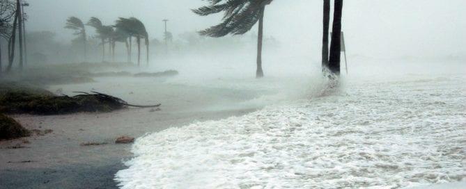 Hurricane Shutters Jacksonville